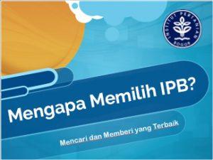 Ketua Osis Admisi Ipb